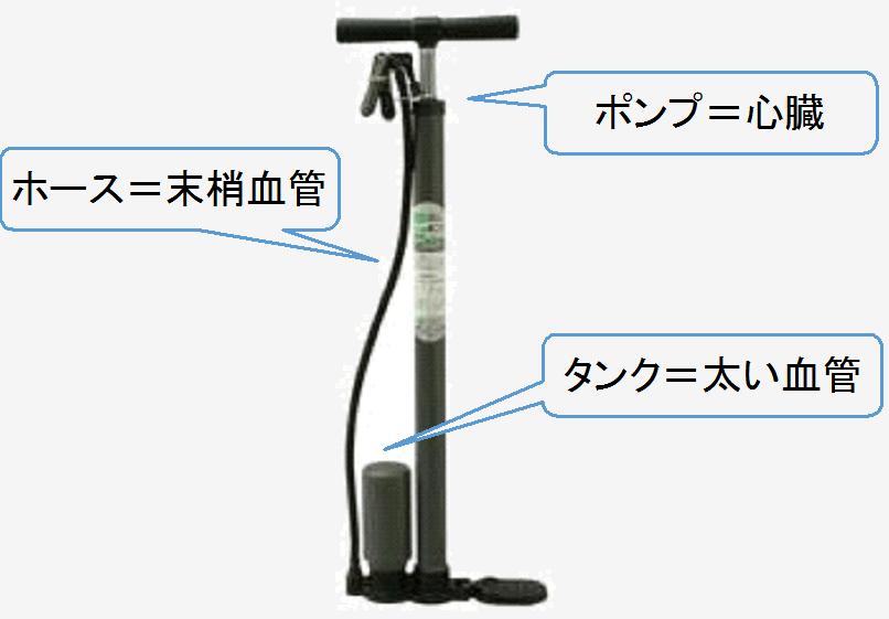 血圧のことを考える時は、タンク付きの空気入れを考えるとわかりやすいです。